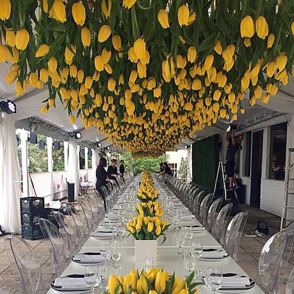 Madeliene's tulip canopy. Photo by Jennifer Myers